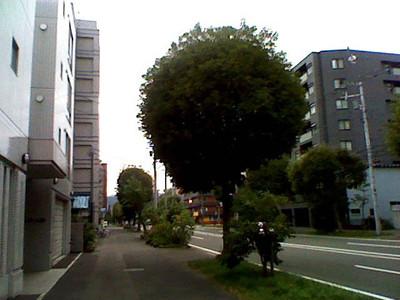 20120804_03